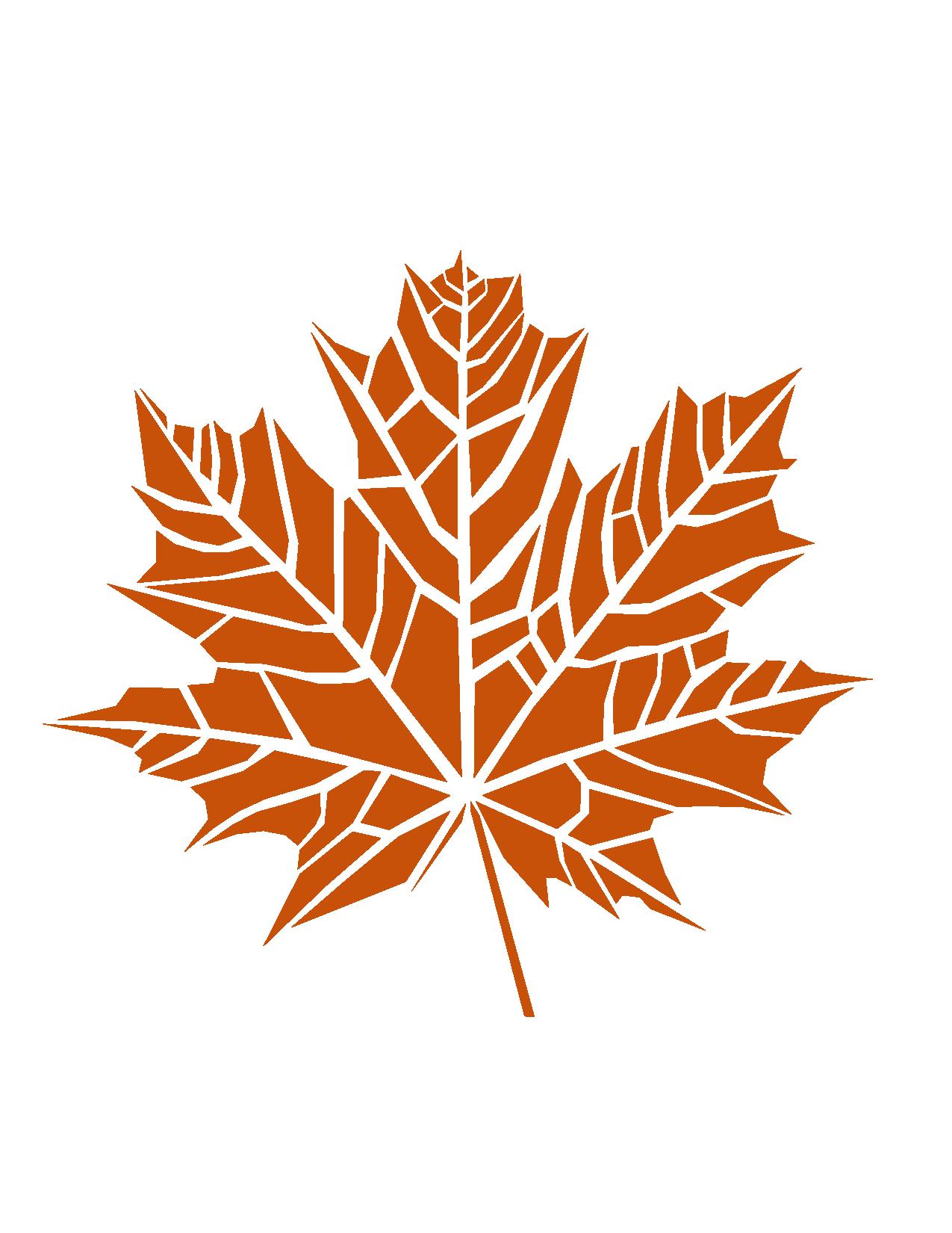 Leafdichotomy 02