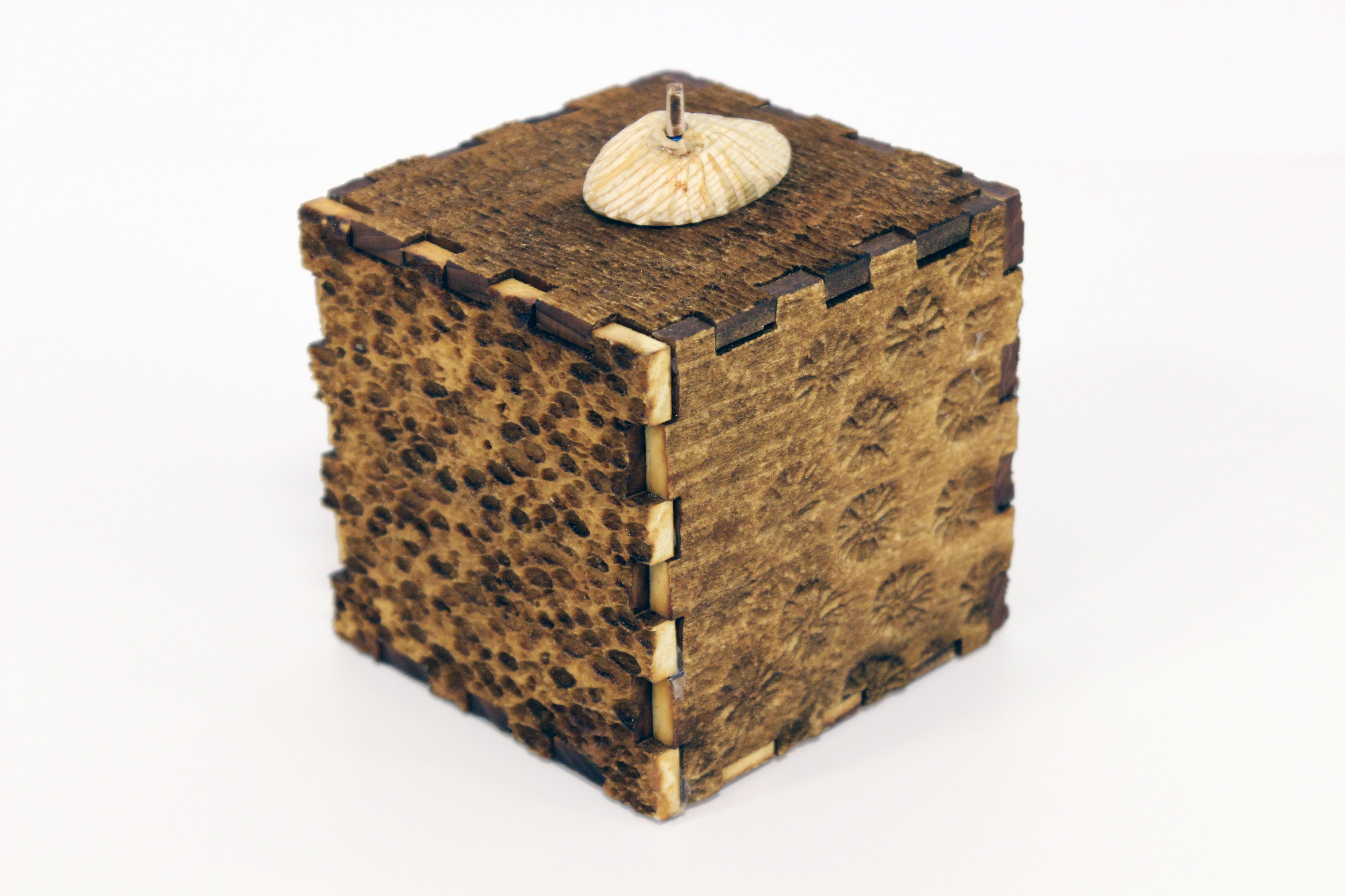 Coral box back