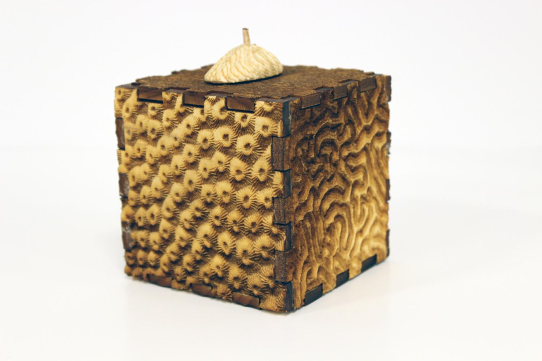 Coral box front.thumb