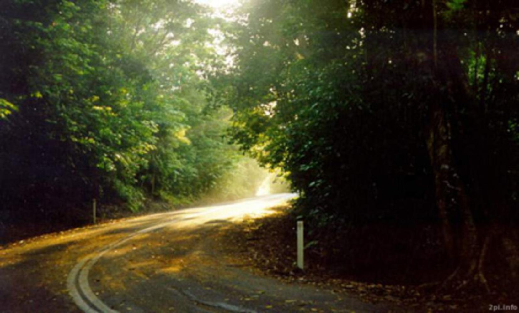 Path.thumb
