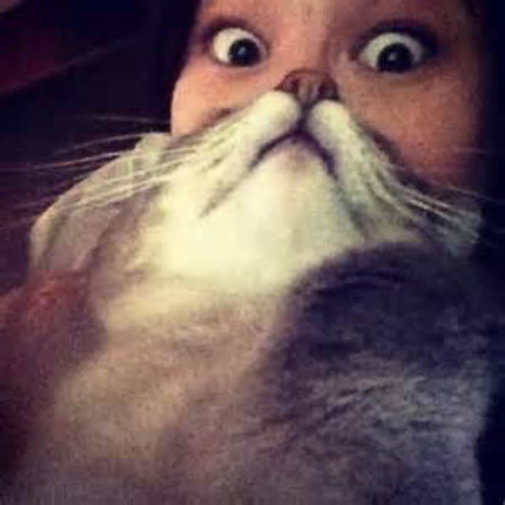 Thumb cat face woman an optical illusion 4940.thumb