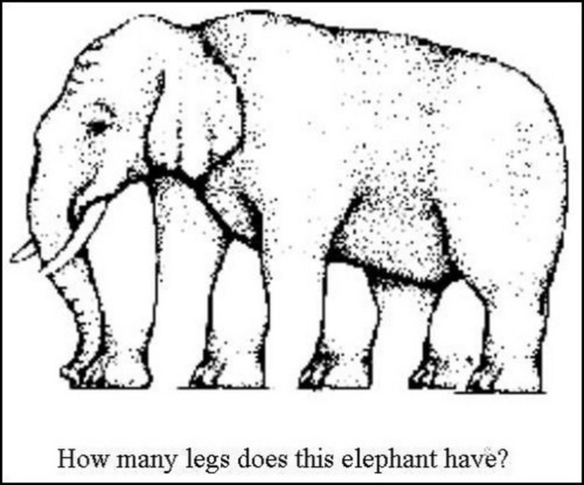 Elephant legs optical illusion.thumb