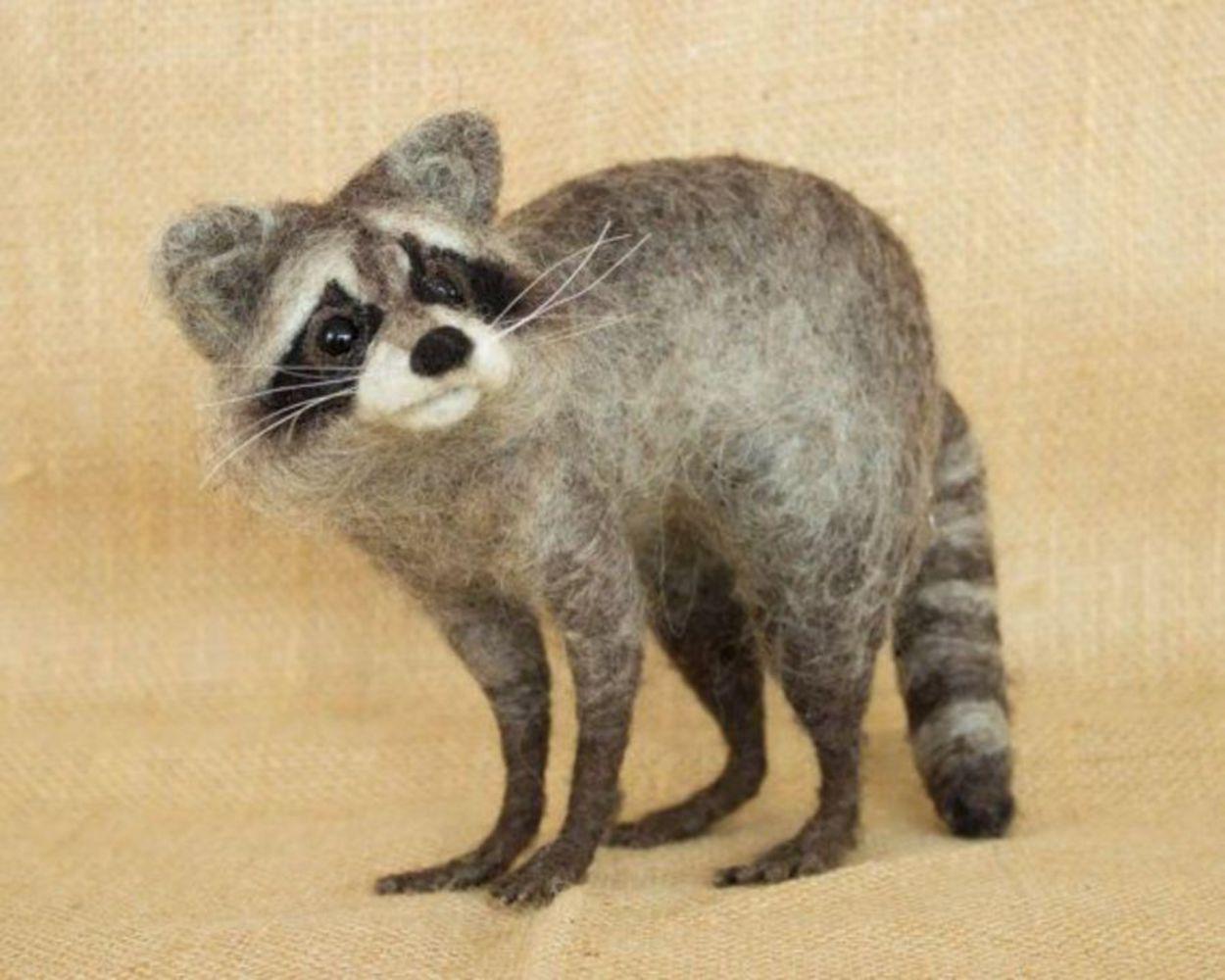 Raccoon example.thumb